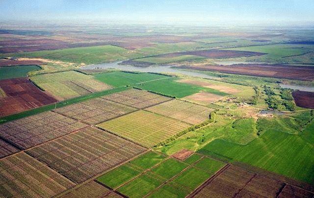 Хабара не вимагали – у ГУ Держгеокадастру пояснили ситуацію із виділенням землі фермеру з Мурованокуриловецького району