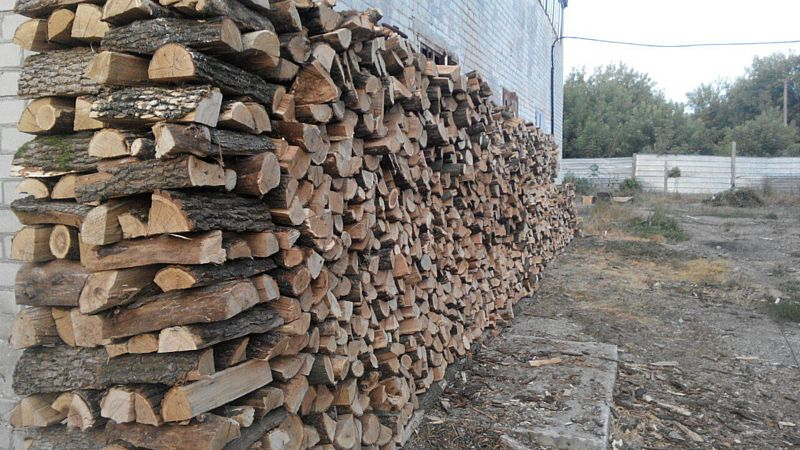 Під домашнім арештом перебуває керівник Вінницького обласного лісогосподарського підприємства