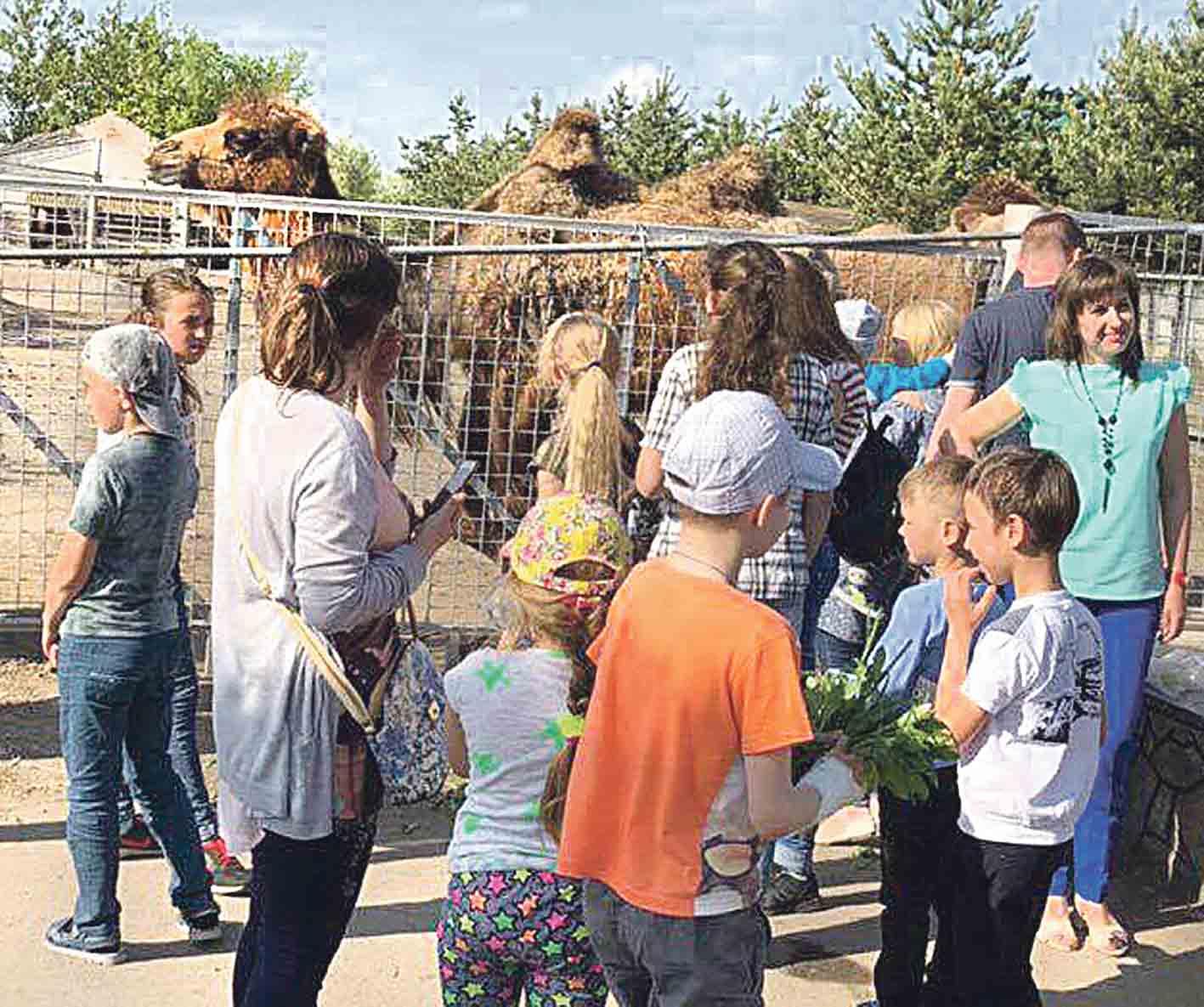 У вихідні вінничани перегодували звірів у вінницькому зоопарку
