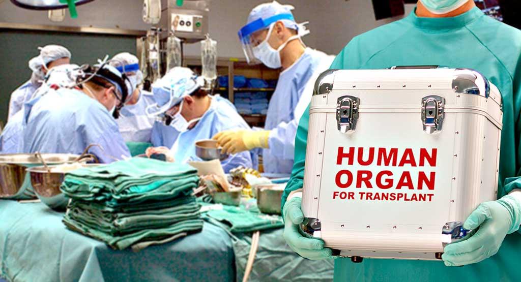 Щоб дозволена трансплантація органів не стала кримінальною комерцією «чорних хірургів»