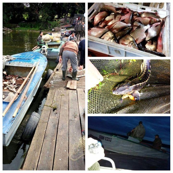 654 тисяч гривень збитків від промислового вилову зафіксував Вінницький Рибоохоронний патруль