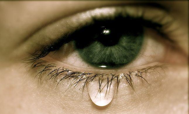 «Урок жорстокості дав сусід нашим дітям» (лист)