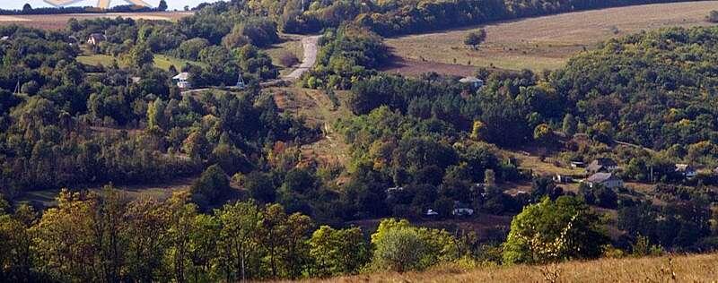 Новий ботанічний заказник буде у селі Вербовець